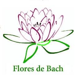 flores_1a